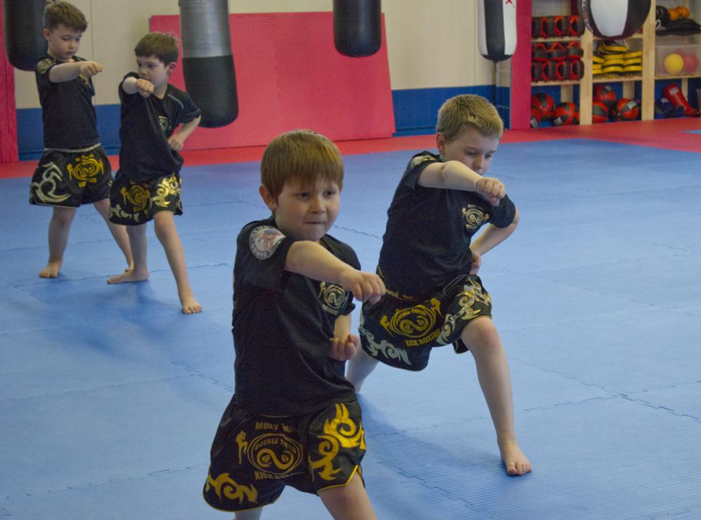 Kampfsport trainieren in Dresden