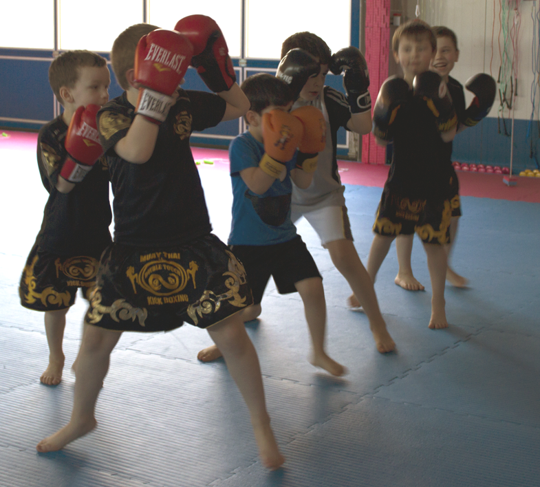 Kampfsport für Kleinkinder in Dresden