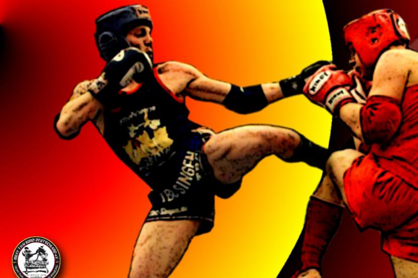 Muay Thai - Deutsche Meisterschaften 2014 in Ulm